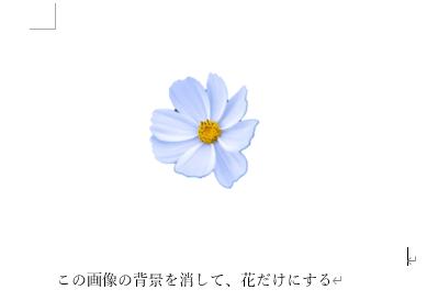 きれいに花だけが残った画像