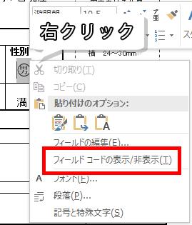 フィールドコードの表示/非表示
