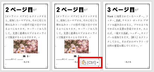 貼り付けのオプションの画像
